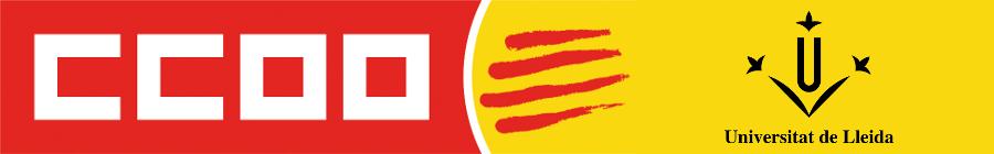 Secció sindical CCOO de la Universitat de Lleida